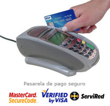 Haga clic para acceder manualmente a la pasarela de pago seguro